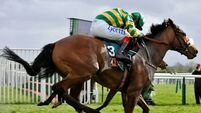 Cee Bee supplemented for Champion Hurdle