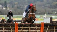 Bobs Worth bounces back with Lexus win at Leopardstown