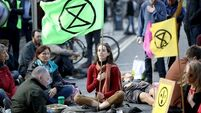 Voters canvassed about climate action ahead of 2020 general election