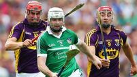 Limerick demolish Wexford