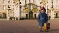 Colin Firth drops out of Paddington film late in production