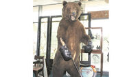 No knockout as bear makes just €2k at eclectic auction