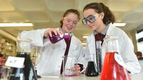 Students to display polluted water study in RDS exhibition