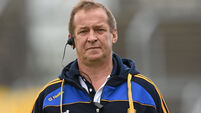 Collins hopes Munster GAA chiefs see sense