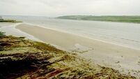 Ex-lifeboat men pull boy, 11, from water in Youghal