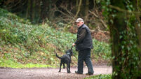 Cadaver dogs deployed in Tina Satchwell search
