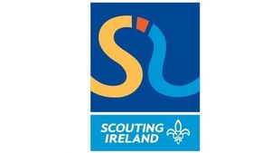 More to scouting scandal,say TDs
