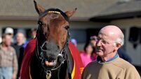 Horse trainer John Oxx in planning row