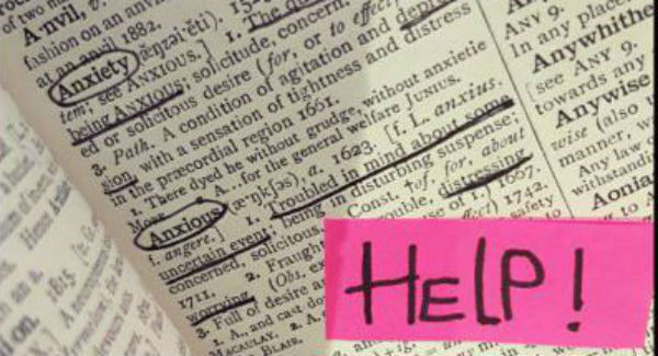 Credit: Willow McConville.