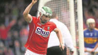 Senior stars backbone young Rebels for Waterford clash