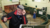 Could you find a match made in heaven at the mart in Kerry?