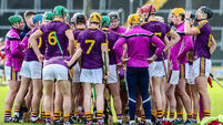 Are Wexford peaking in February when they should be puking?