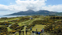 Patience pays for impressive Peter O'Keeffe at Royal County Down
