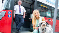 Barking mad: Doggie bus to run at summer show