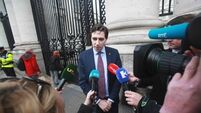 Government 'may not get' to legislate even if Eighth repealed