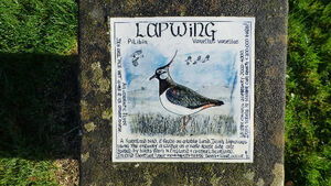 Beautiful plaques are key to West Cork's bird life