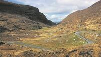 Widower still  waiting for signage after fatal crash at Kerry's Gap of Dunloe