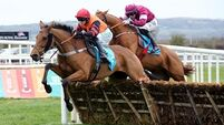 Samcro unlikely to be a Champion Hurdler