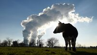 Transport and agriculture sector emissions to increase