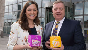 Small businesses urged to avail of new Brexit supports
