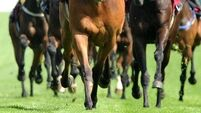 Curragh Racecourse drinks licence granted