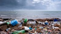 Becoming an island full of plastic paddies is now a burning issue