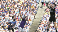 Jim Gavin says he has faith in deputy netminder Evan Comerford