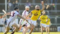 Wexford show a hint of summer in beating Galway