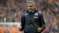 Chris Hughton is heading back to the bright lights
