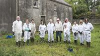 Watch: There's a buzz in Ballyvourney with the success of a new beekeeping co-operative