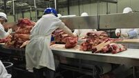 Beef load 'damaged in abattoir not transit'