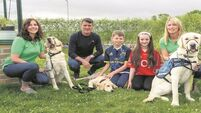 Roy Keane drops in on guide dog fundraisers