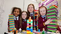Meet some of this year's BT Young Scientist hopefuls