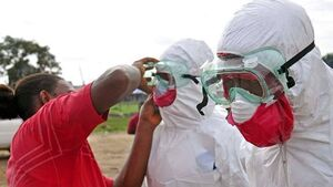 Irish group working to develop Ebola vaccine