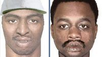 New Orleans police release photofits of suspects after shooting of Limerick garda