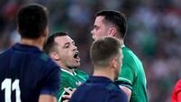 Healy able to see the greater good as Ireland turn focus to Japan