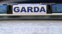 600,000 pairs of gloves and vats of sanitiser on way to gardaí