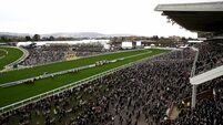 People returning from Cheltenham will not have to self-isolate - Harris