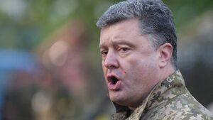 Ukraine pushes for quick ceasefire
