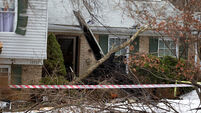 Six die, including two children, as plane crashes into house