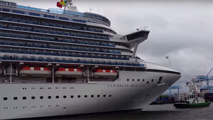 WATCH: Two massive cruise liners arrive in Cork and Dublin