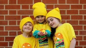 Darkness Into Light 2020 postponed due to Covid-19