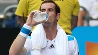 Murray avoids Djokovic draw