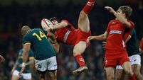 Halfpenny kicks Wales to win over Springboks