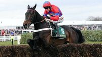 Sprinter Sacre suffers small bleed