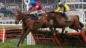 Another Mullins wins at Cheltenham claiming Bartlett Novices Hurdle