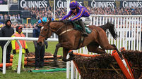 Wicklow Brave makes it seven for Mullins