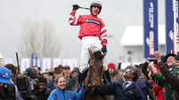 Coneygree wins Gold Cup in only fourth race over fences