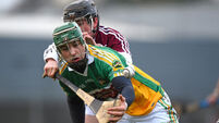 Walsh Cup: Laois, Antrim and Offaly take the spoils